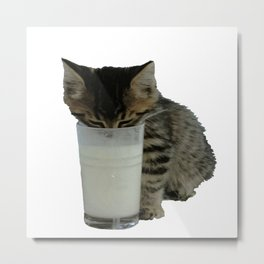 Cute Wild Kitten With A Glass Full of Optimism Metal Print