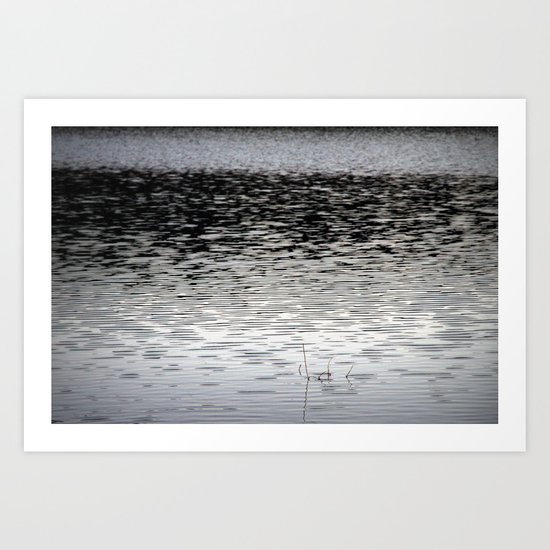 the pond Art Print