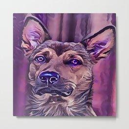 The Kunming Wolf Dog Metal Print