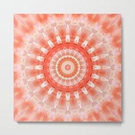 Mandala vivacity Metal Print