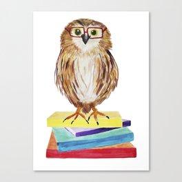 Reading Owl Canvas Print
