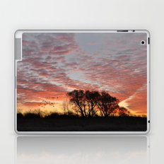 Morning Glory Laptop & iPad Skin