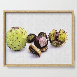 chestnut (Castanea) Serving Tray