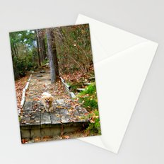 Autumn Stroll Stationery Cards