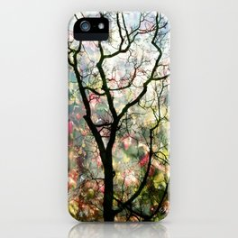 Passing Through, While looking for you iPhone Case