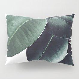 Ficus Elastica #13 #decor #art #society6 Pillow Sham