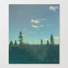 Up North Canvas Print