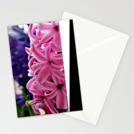 Pink hyacinth II Stationery Cards