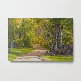 Northern Lights Camp, Lake Metigoshe, North Dakota 4 Metal Print