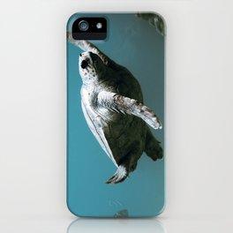 sea turtle iPhone Case