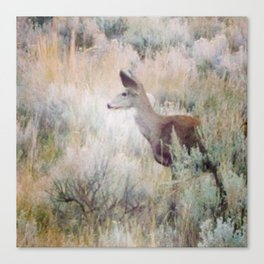 Sage Deer Canvas Print