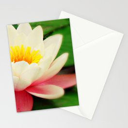 White water flower Stationery Cards