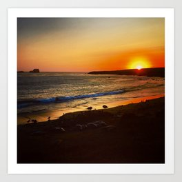 Surf and Seals at Sunset in Big Sur Art Print