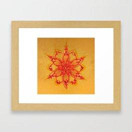 MANDALA NATURE_2 Framed Art Print