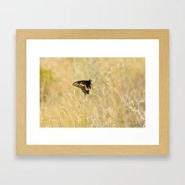 Butterfly #2 Framed Art Print