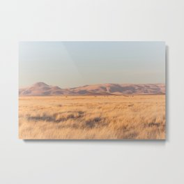 Home on the Range II Metal Print