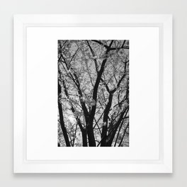 To The Skies Framed Art Print