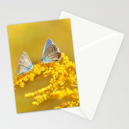 Love 85 Stationery Cards
