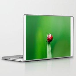 Balancing Acts Laptop & iPad Skin
