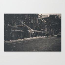 Bird3 Canvas Print