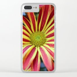 Striped Daisy Clear iPhone Case
