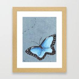 Sapphire Wings Framed Art Print