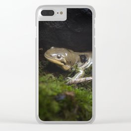 Barred Tiger Salamander Clear iPhone Case
