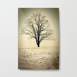 Standing In The Cold Metal Print