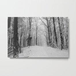 Lonely... Metal Print
