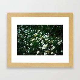 Moody Meadow Framed Art Print