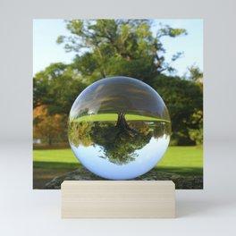 Old Park Tree, crystal ball / Glass Ball Photography Mini Art Print