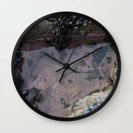 Pink Ocean Rock Pool with Mussels Wall Clock