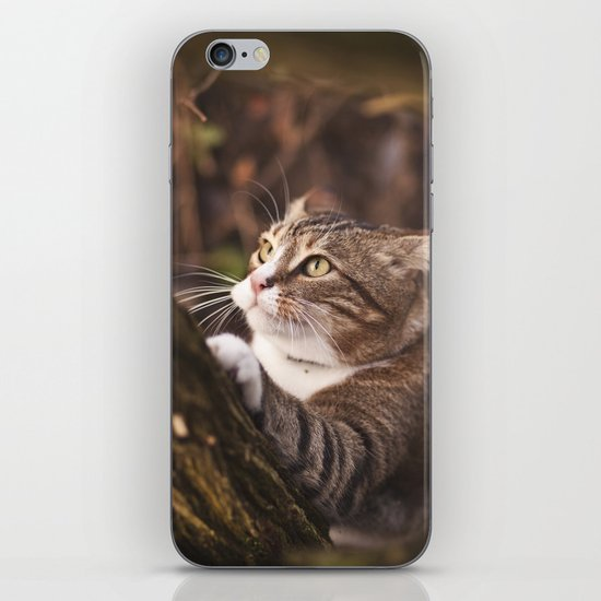 Chrapcio the Fierce iPhone & iPod Skin