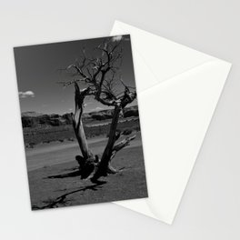 Desert Shadows Stationery Cards