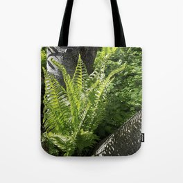 Ferns - leaves and shadows - against birch bark Tote Bag