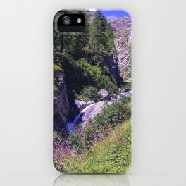 Hiking pathway in a forest in the valley of Gressoney near Monte Rosa iPhone Case