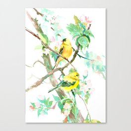 American Goldfinch and Apple Blossom Canvas Print