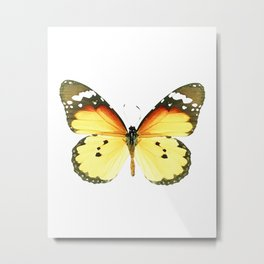 Danaus chrysippus Butterfly Metal Print