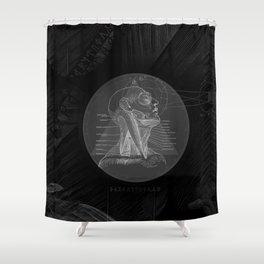 Fx of an Eclipse Shower Curtain