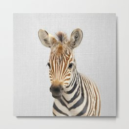 Baby Zebra - Colorful Metal Print