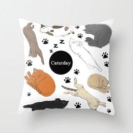 Caturday Throw Pillow