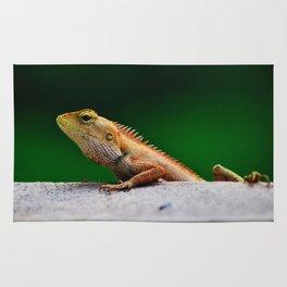 Lizard Rug