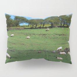 Field of Irish Sheep Pillow Sham