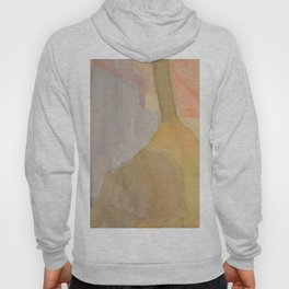 Instrumental Shapes Hoody
