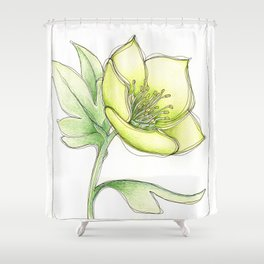 Green Hellebore Shower Curtain
