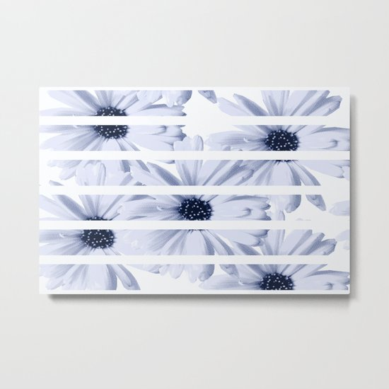 Light Blue Daisies with White Stripes Metal Print