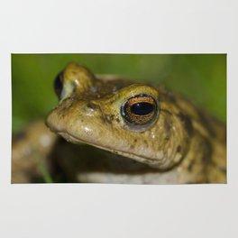 Frog posing Rug