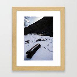 Log on the Pecos Framed Art Print