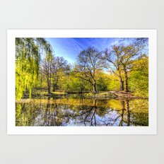 The Tranquil Pond Art Print