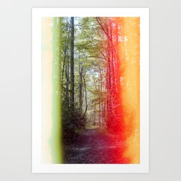 Peaceful Path in the Mountains - Light Leaked Film Photograph Art Print